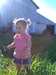 My friends Dan and Carly\'s daughter, Avery, at her first Iowa dairy farm this weekend. Soon we'll be neighbors!